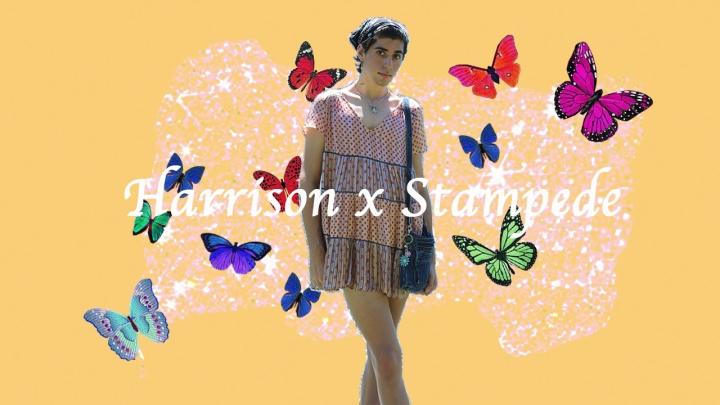 Harrison x Stampede